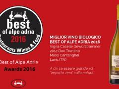Best of Alpe Adria 2016