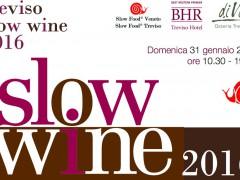 Treviso Slowine