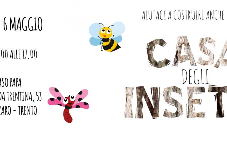 La casa degli insetti utili