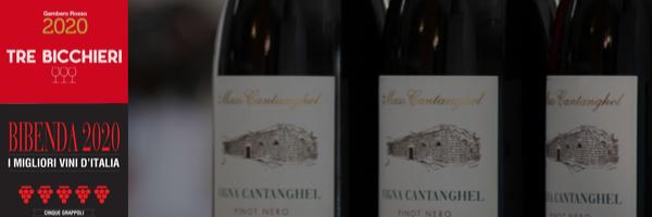 Vigna Cantanghel Pinot Nero 2016: 3 Bicchieri Gambero Rosso e 5 Grappoli Bibenda